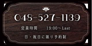 048-527-1139